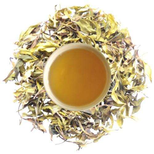special darjeeling white tea