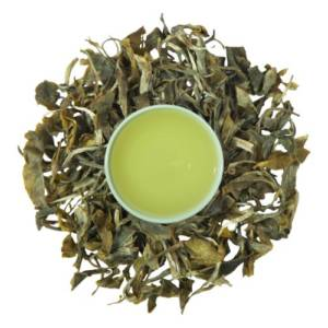exquisite darjeeling green tea