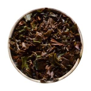 Darjeeling Clonal Tips