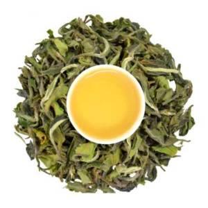Seasons' first first flush tea