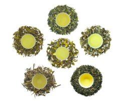 darjeeling green teas