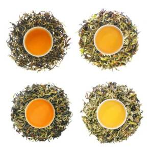 rohini second flush teas