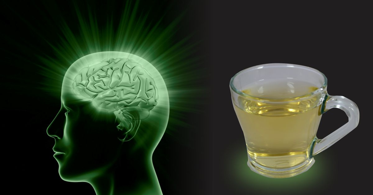 Did you know Green Tea boosts your Brain health & protects you from memory loss?