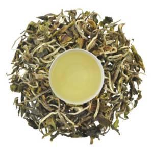 First produced first flush tea