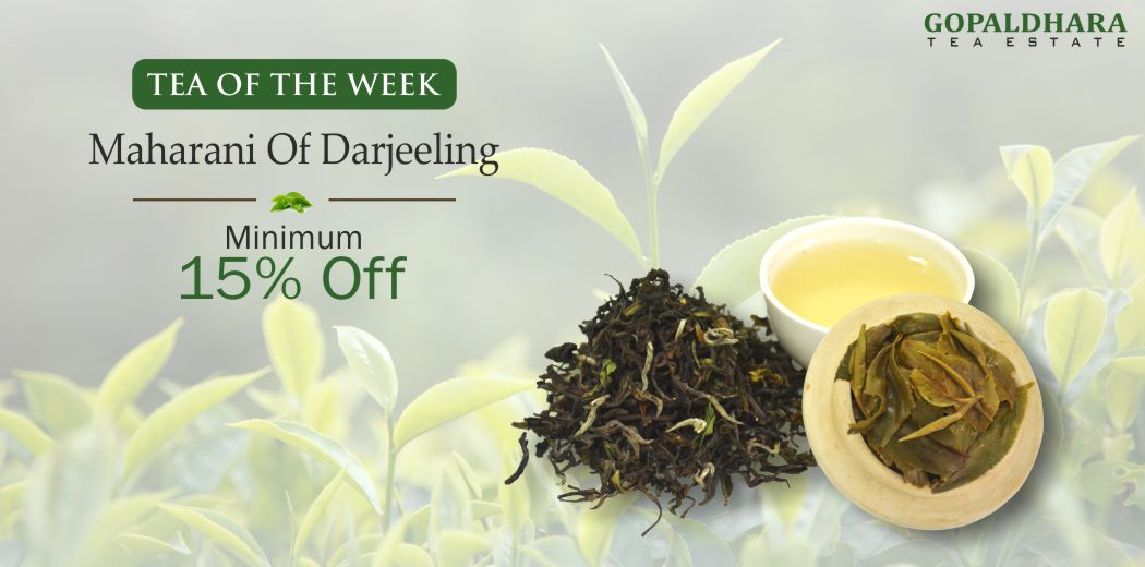 Maharani Tea of the week Web Slider Creative 2019