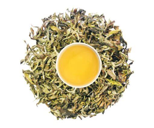 second flush oolong tea
