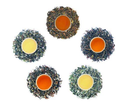 gopaldhara autumn flush tea